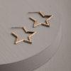 Dora Star Earrings-Gold
